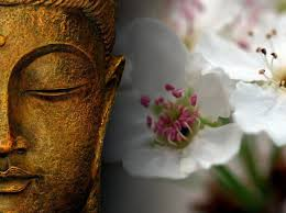 Yoga et Boudha